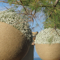 ::Spheres of rope & gypsophylle - chapel decor