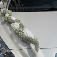 ::Braid - car decor
