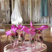 ::Table decoration with vanda orchids